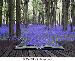 hermoso, concepto, bluebell, primavera, creativo, libro, bosque, flores, páginas, paisaje, alfombra