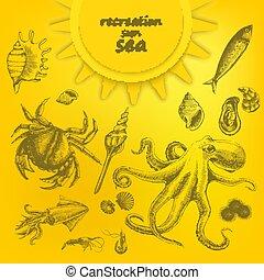 hermoso, conjunto, amarillo, fondo., vector, marina, ...