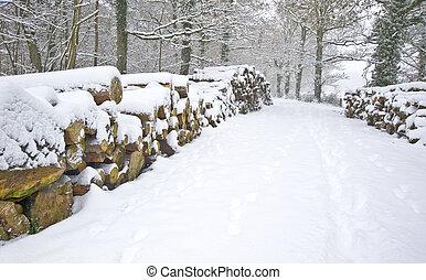 hermoso, corte, apilado, invierno, nieve, profundo, escena, virgen, bosque, fresco, trayectoria, lados, madera