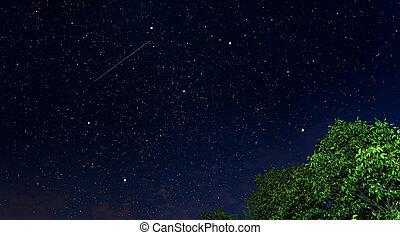 hermoso, estrellado, noche, sky.