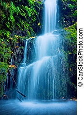 hermoso, exuberante, cascada