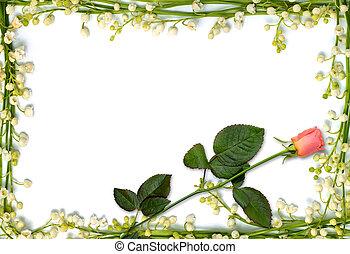 hermoso, flor, marco, con, rosa subió, plano de fondo