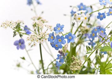 hermoso, flores azules