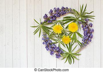 hermoso, flores, forma, diente de león, lupino, space., plano de fondo, luz, círculo, copia