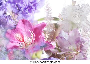 hermoso, flores, hecho, foco suave