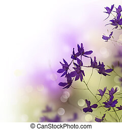 hermoso, frontera floral