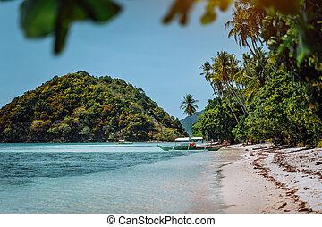 hermoso, gozar, isla, relajar, filipinas, fuga, vacaciones, tropical, nido, verano, palawan, el, escalofrío