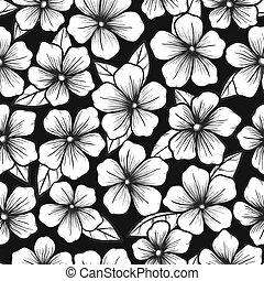 hermoso, gráfico, contorno, seamless, fondo negro, flores ...