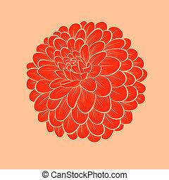 hermoso, gráfico, flor, estilo, aislado, líneas, contornos, ...