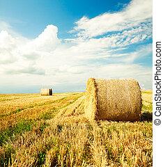 hermoso, granja, almiar, paisaje