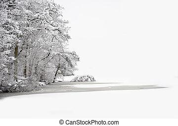 hermoso, invierno, espacio, texto, nieve, profundo, escena,...