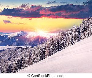 hermoso, invierno, salida del sol, en las montañas