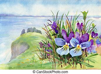 hermoso, iris, acuarela, pradera