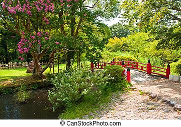 Hermoso carpas jard n piscina japon s hermoso for Jardin japones piscina