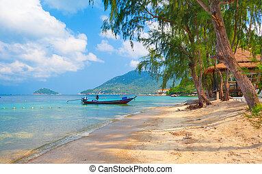 hermoso, koh, playa., longtail, tailandia, tao, barco