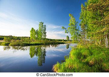 hermoso, lago