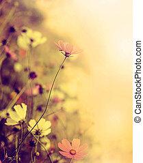 hermoso, mancha, retro, plano de fondo, con, flores