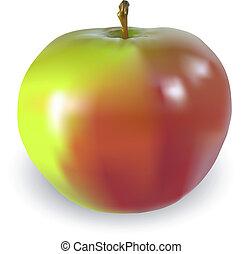 hermoso, manzana grande