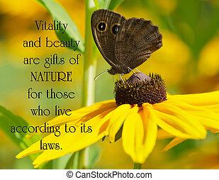 hermoso, mariposa, leonado, vinci, flower., marrón, ninfa,...