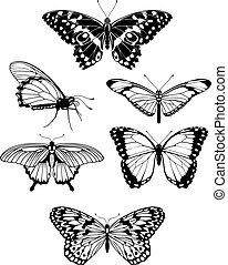 hermoso, mariposa, siluetas, estilizado, contorno
