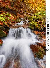 hermoso, Montaña, colorido, hojas, otoño, cascada, bosque, naranja, río, rojo, ocaso