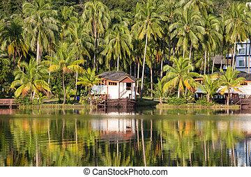 hermoso, montaña, tropical, lago, recurso