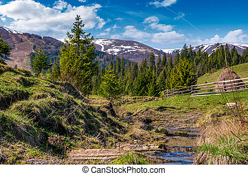 hermoso, montañoso, campo, en, primavera