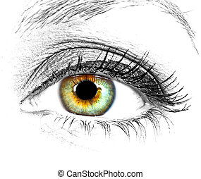 hermoso, ojo, de, mujer
