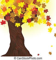 hermoso, otoño, árbol.