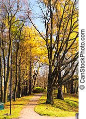 hermoso, otoño, parque