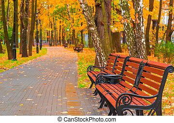 hermoso, otoño, parque, con, vacío, bancos