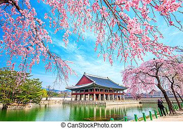 hermoso, paisaje, alrededor, palacio, abril, flor,...