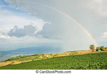 hermoso, paisaje, con, un, arco irirs, en, el, cielo
