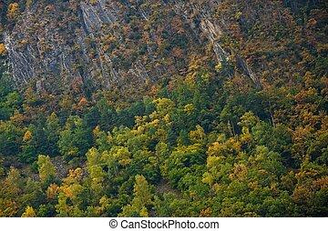 hermoso, paisaje de montaña