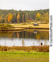 hermoso, paisaje de otoño