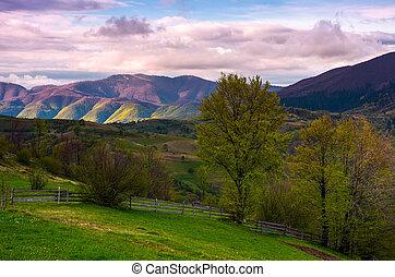 hermoso, paisaje, en, montañoso, área rural