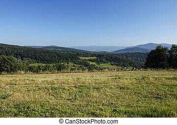 hermoso, paisaje rural, montaña