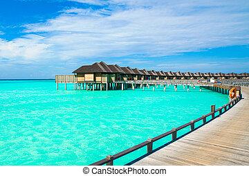 hermoso, paisaje tropical