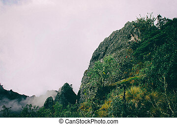 hermoso, papel pintado, de, montañas, naturaleza, detalle, en, el, andes.