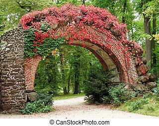 hermoso, parque, para, otoños, caminata