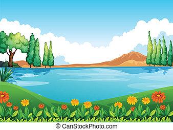 hermoso, pic, naturaleza