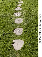 hermoso, piedras, césped, grass., verde, trayectoria, blanco