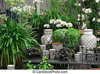 hermoso, plantas, y, cerámica, en, un, florería