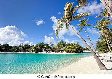 hermoso, playa, bora