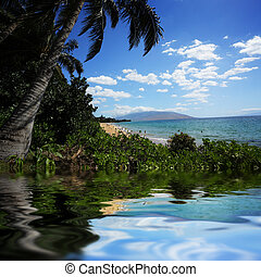 hermoso, playa tropical, hawai