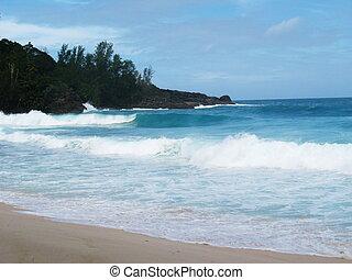 hermoso, playa, vista