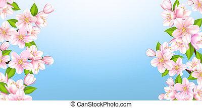 hermoso, ramas, de, sakura