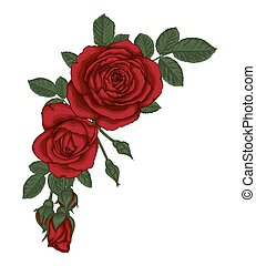 hermoso, ramo, con, rosas rojas, y, leaves., floral,...