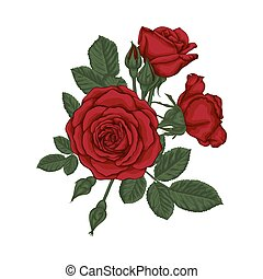 hermoso, ramo, leaves., arrangement., rosas, floral, rojo