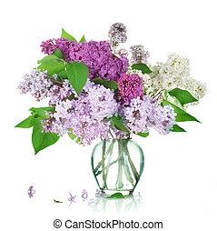 hermoso, ramo, lila, florero